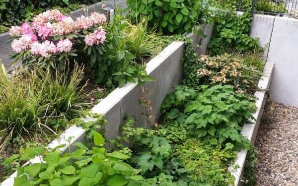 Klassischer Garten 8