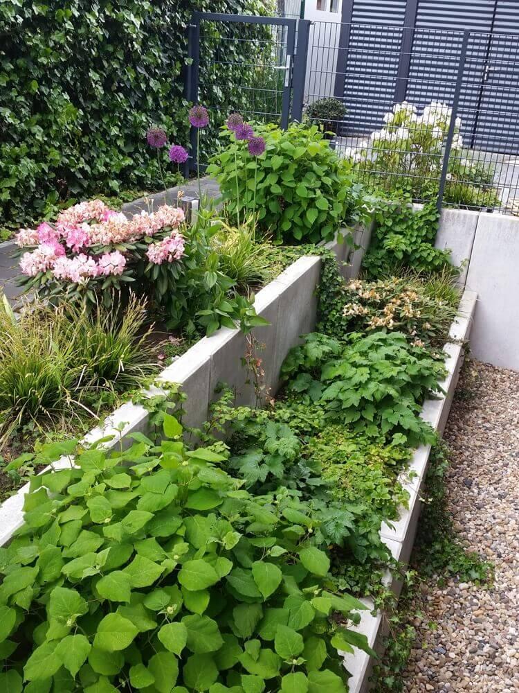 Klassischer Garten 8 vollbild