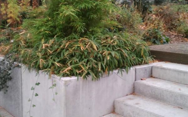 Moderner Garten mit Höhenunterschieden 2