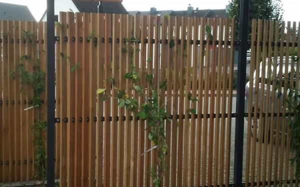 Sichtschutz im Reihenhausgarten 2