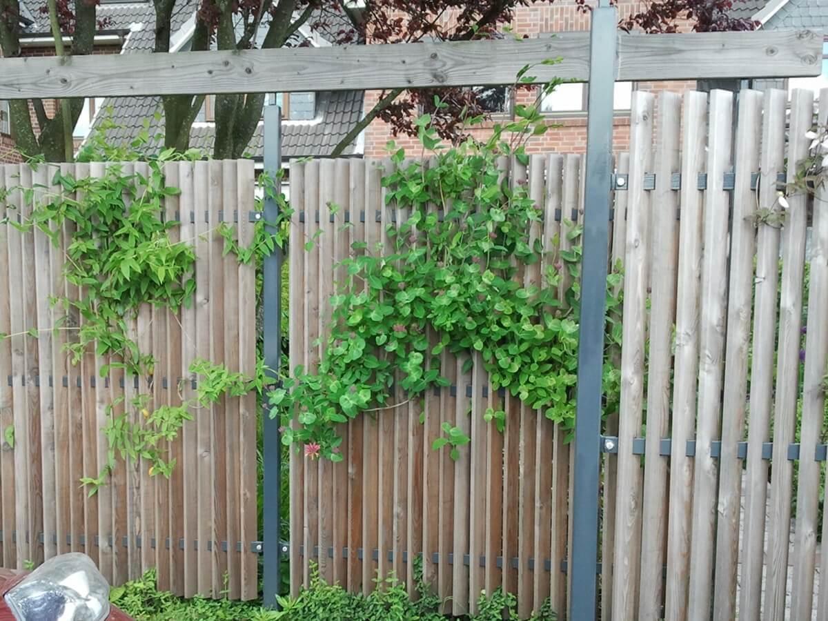 Sichtschutz im Reihenhausgarten 5 vollbild